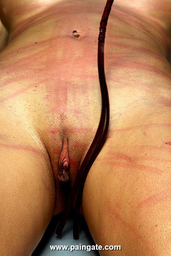 Whipped cream on vagina